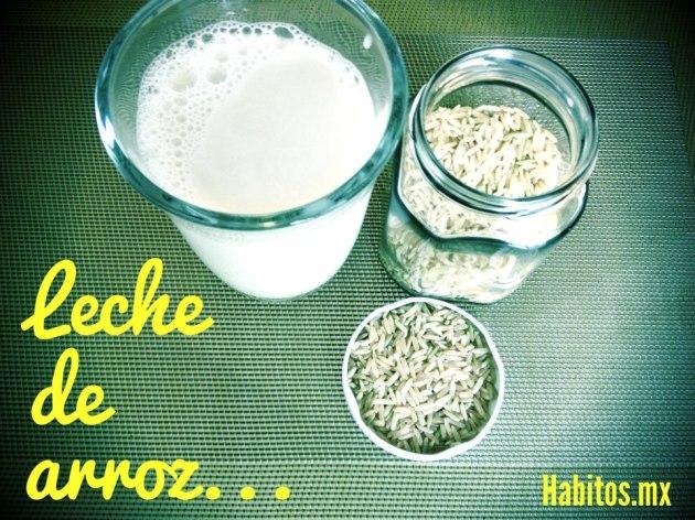 Recetas - leche de arroz
