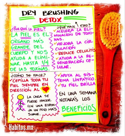 Buenos hábitos - dry brushing detox