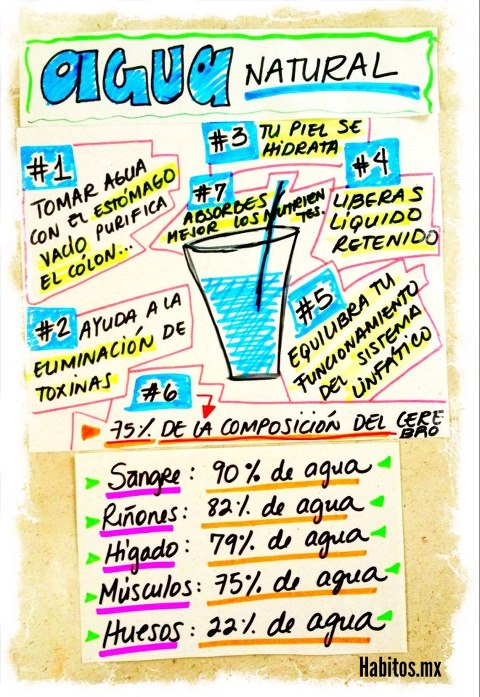 Buenos hábitos - razones de porqué tomar agua natural