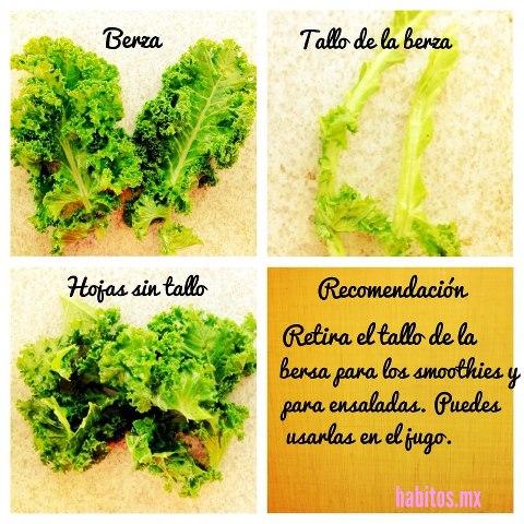 Receta - berza y kale
