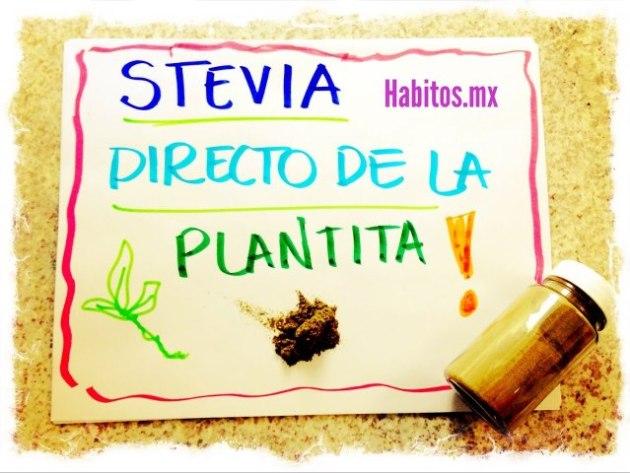 Recetas - stevia natural